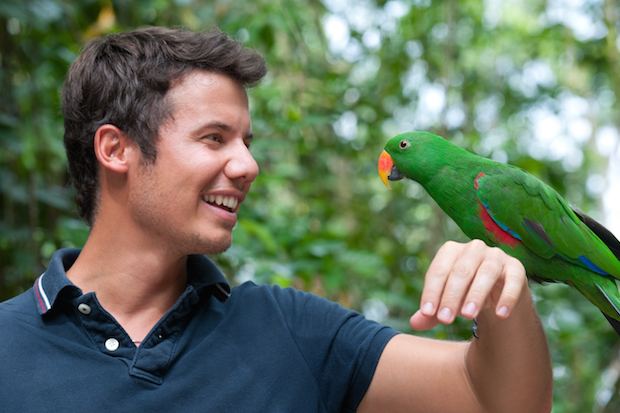 how to teach a parrot to talk - hold him up in front of your face as you do it