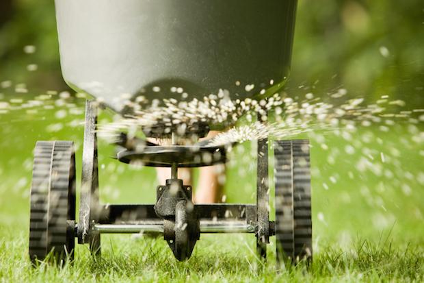 Rotary fertilizer spreader