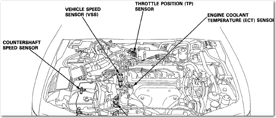 1994 Honda Accord: where is the speed sensor located?