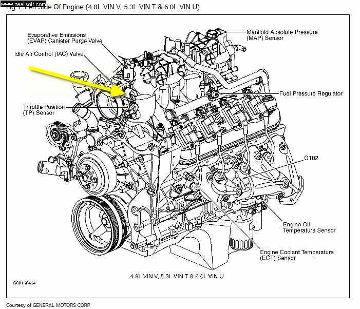 Diagram Additionally 2006 Cadillac 2 8 V6 Engine likewise Pontiac G5 Engine Diagram Egr in addition F Rear End Diagram Custom Wiring Ford Fuse Box For Free Diagrams Schematics Window Find Schematic Identifier Trusted Explained Electrical Parts Super Duty Steering With Description additionally 2003 Saturn Vue Radio Wiring Diagram together with Saturn Rear Embly Diagram Diy Enthusiasts Wiring Diagrams. on 2003 saturn ion wiring harness diagram
