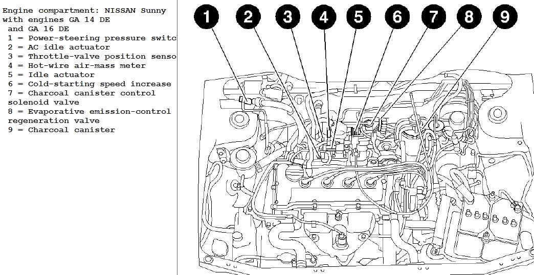 I've Got A Problem With Nissan Sunny Sold As Sentra In Left. Full Size. Nissan. Nissan Twin Cam 16 Valve Engine Diagram At Scoala.co
