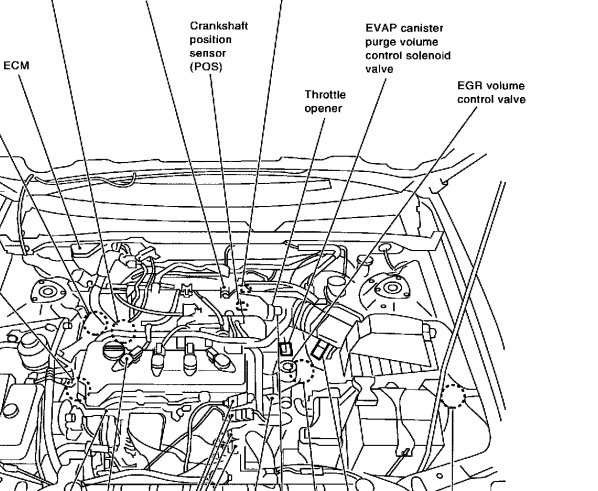 i have a check engine light on caused by a p0732 and a p0403 couldthe line could also be to the evap (shown in diagram as well)