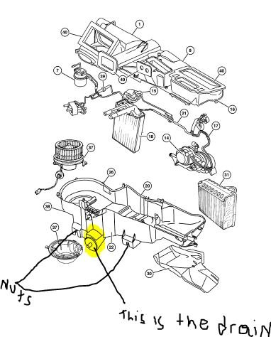 2001 Dodge Dakota Ac Drain Wiring Diagrams