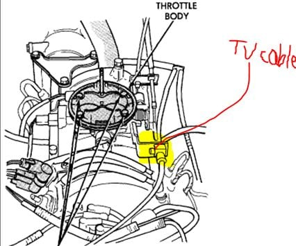 Plan Diagram Of Artery And Vein besides Msd 5 Wiring Diagram furthermore Briggs And Stratton Exl8000 Wiring Diagram also Kawasaki Headlight Wiring Diagram further 93 Grand Cherokee 46rh Transmission Wiring Harness. on msd 6al wiring diagram dodge