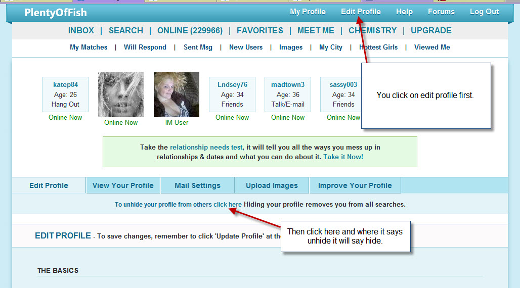 Download activate my plenty of fish account gaintube for Plenty of fish basic user search